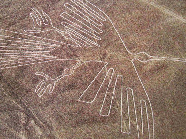 lineas de nazca figura pajaro