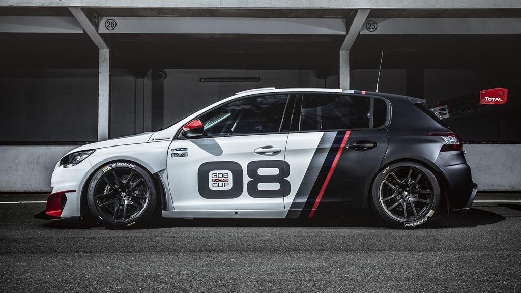 Peugeot 308 Racing Cup 12