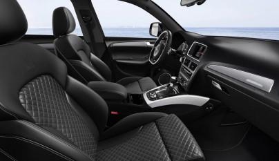 Audi SQ5 TDI plus 13