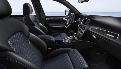 Audi SQ5 TDI plus 2
