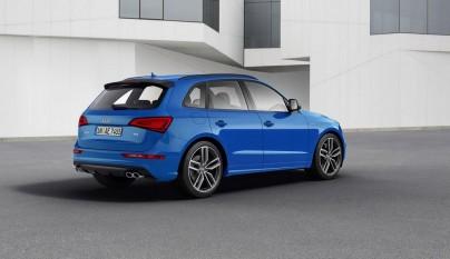 Audi SQ5 TDI plus 6