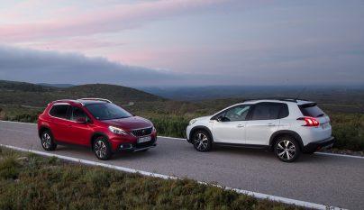 Peugeot 2008 2016 18