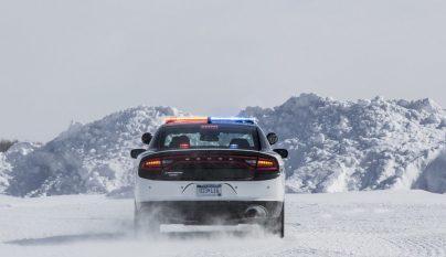 Dodge Charger Pursuit 14